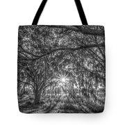 Odessa Sunrise -black And White Tote Bag