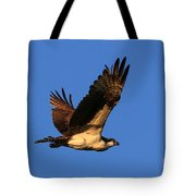 Osprey Flying By Tote Bag
