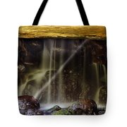 Of Light And Mist  Tote Bag