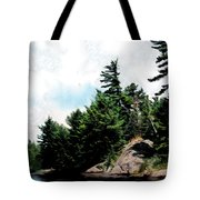 Of Summers Past Tote Bag