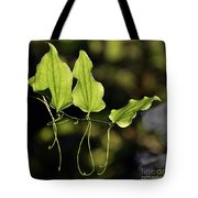 Of Veins And Tendrils Tote Bag