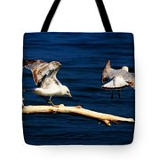 Off You Gull Tote Bag