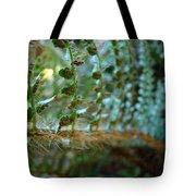 Office Art Fern Green Forest Ferns Giclee Prints Baslee Troutman Tote Bag