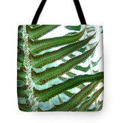 Office Art Ferns Green Forest Fern Giclee Prints Baslee Troutman Tote Bag