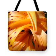 Office Art Floral Artwork Orange Tiger Lily Baslee Troutman Tote Bag