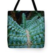 Office Art Forest Ferns Green Fern Giclee Prints Baslee Troutman Tote Bag