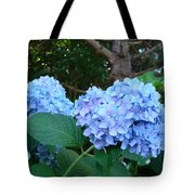 Office Art Hydrangea Flowers Blue Giclee Prints Floral Baslee Troutman Tote Bag