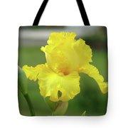 Office Art Irises Yellow Iris Flower Giclee Prints Baslee Troutman Tote Bag