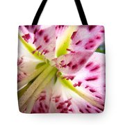 Office Art Lily Flower Giclee Prints Pink Lilies Baslee Troutman Tote Bag