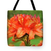 Office Art Prints Azaleas Botanical Landscape 11 Giclee Prints Baslee Troutman Tote Bag