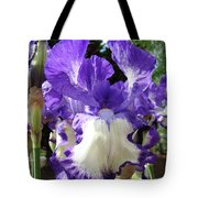 Office Art Prints Irises Purple White Iris Flowers 39 Giclee Prints Baslee Troutman Tote Bag