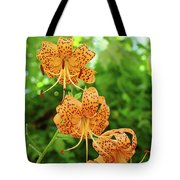 Office Art Prints Tiger Lilies Flowers Nature Giclee Prints Baslee Troutman Tote Bag