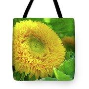 Office Art Sunflower Sun Flowers Giclee Baslee Troutman Tote Bag