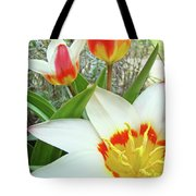 Office Art Tulips Tulip Flowers Giclee Art Prints Florals Baslee Troutman Tote Bag