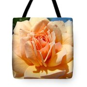 Office Artwork Roses Peach Rose Flower Giclee Baslee Troutman Tote Bag
