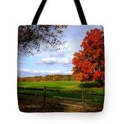Oh Beautiful Tree Tote Bag