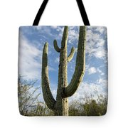 Oh Mexico Tote Bag