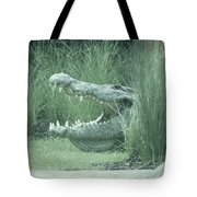 Oh My, What Big Teeth You Have Tote Bag
