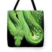 Oh So Green Viper Tote Bag