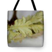 Oh So Small Oak Leaves Tote Bag