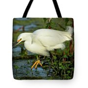 Oh Them Golden Slippers Tote Bag