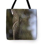 Oh What Webs We Weave Tote Bag
