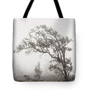 Ohia Lehua Tree Tote Bag