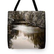 Ohio Autumn Bw Tote Bag