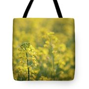 Oilseed Rape Tote Bag