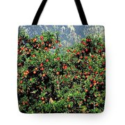 Okanagan Valley Apples Tote Bag