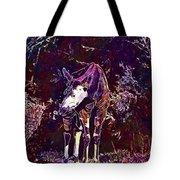 Okapi Okapia Mondonga Mammals  Tote Bag