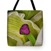 O'keeffe's Muse Tote Bag