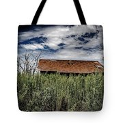 old abandoned house Texico NM Tote Bag