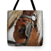 Old Blue Eyes Savannah Tote Bag