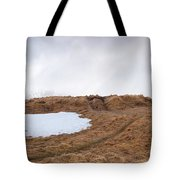Old  Church In Hellnar, Snaefellsnes Peninsula, Iceland Tote Bag