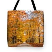 Old Coach Road Autumn Tote Bag