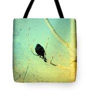 Old Crow Medicine Show Tote Bag