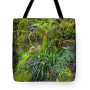 Old Disused Quarry Tote Bag