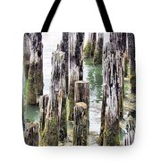 Old Dock Remains Tote Bag