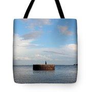 Old Docks Of Gasparilla Tote Bag