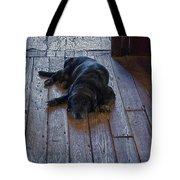 Old Dog Old Floor Tote Bag
