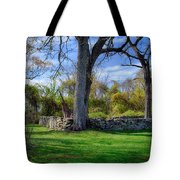 Old Family Plot In Cromwell Valley Park Tote Bag