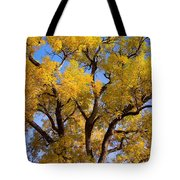 Old Giant  Autumn Cottonwood Tote Bag