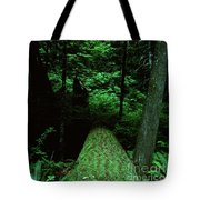 Old Growth Forest At Lost Lake On Mount Hood Tote Bag