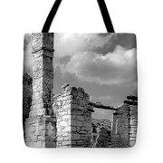 Old Limestone House Ruins Tote Bag