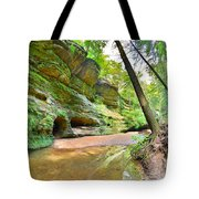 Old Man's Gorge Trail And Caves Hocking Hills Ohio Tote Bag