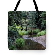 Old Mill Park In Mill Valley 2 Tote Bag