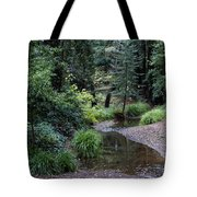 Old Mill Park In Mill Valley Tote Bag