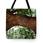 Old Oak Tote Bag