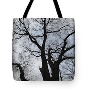 Old Oak Overcast Tote Bag